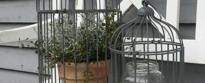 Fuglebur fra B- Green