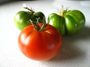 Tomat 'Delicia' 1